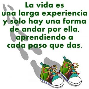 paso a paso, frases positiva, caminar, aprender