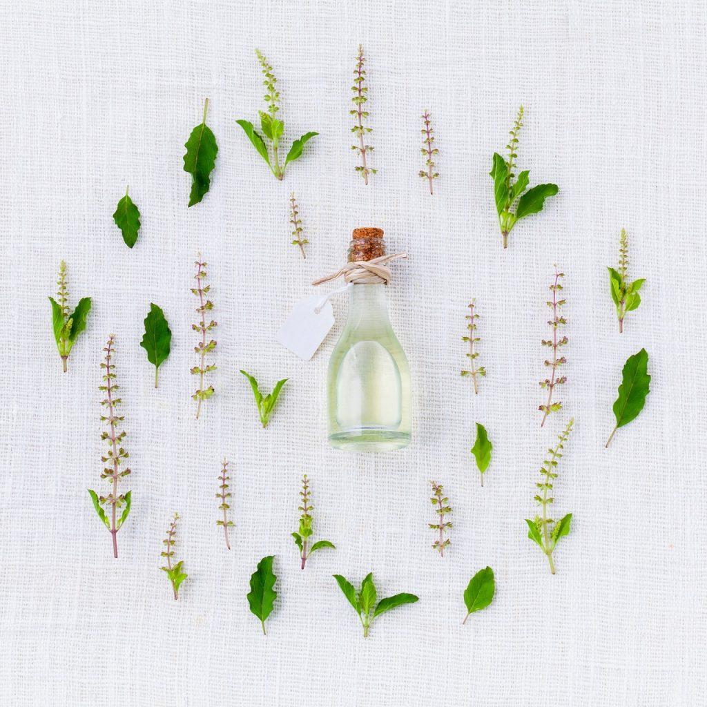 plantas medicinales, fitoterapia